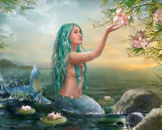 mermaid_ariel_by_alenalazareva